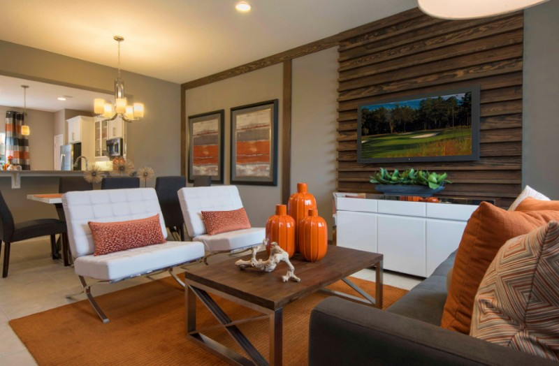 orange home accents with Pillows 1