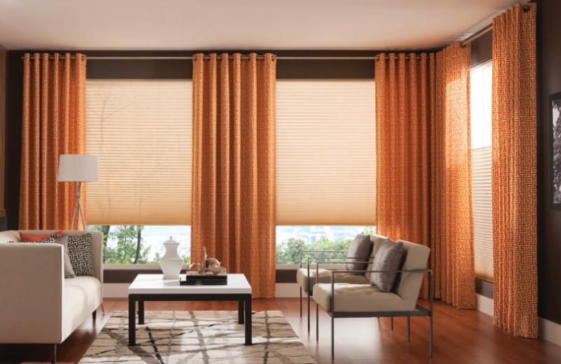 room's identity with window treatments